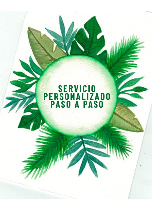 servicios dibujo