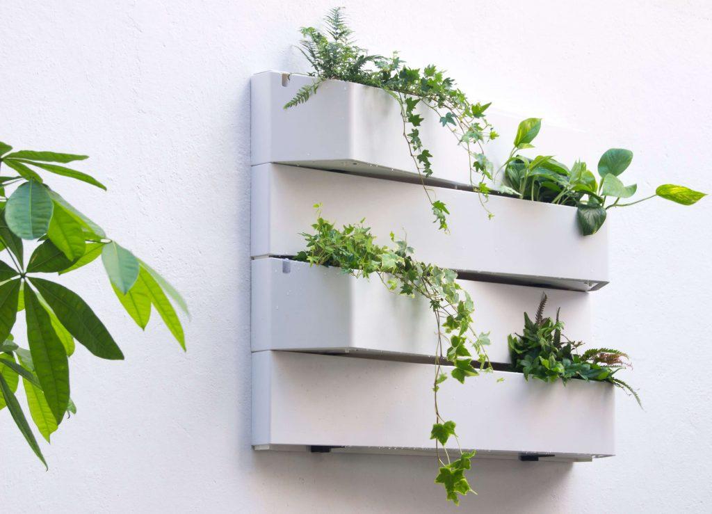 jardín vertical con plantas de interior