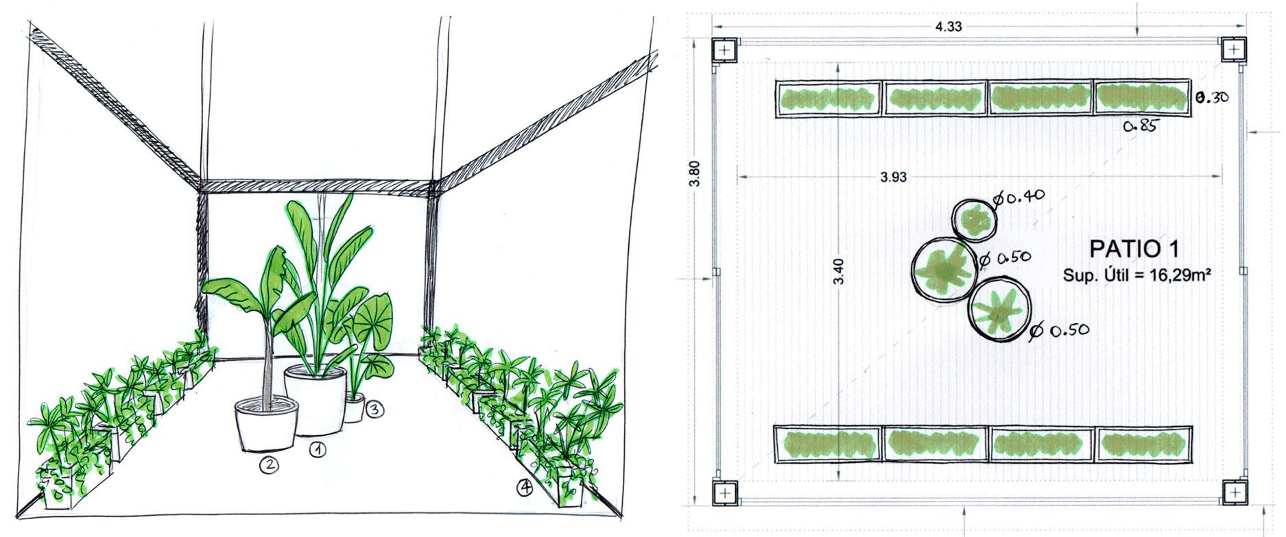 boceto diseño plantas
