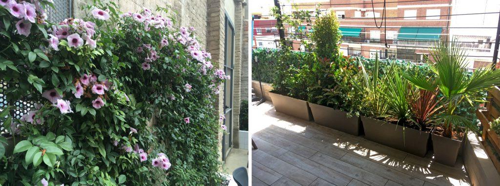 jardín con rincón verde