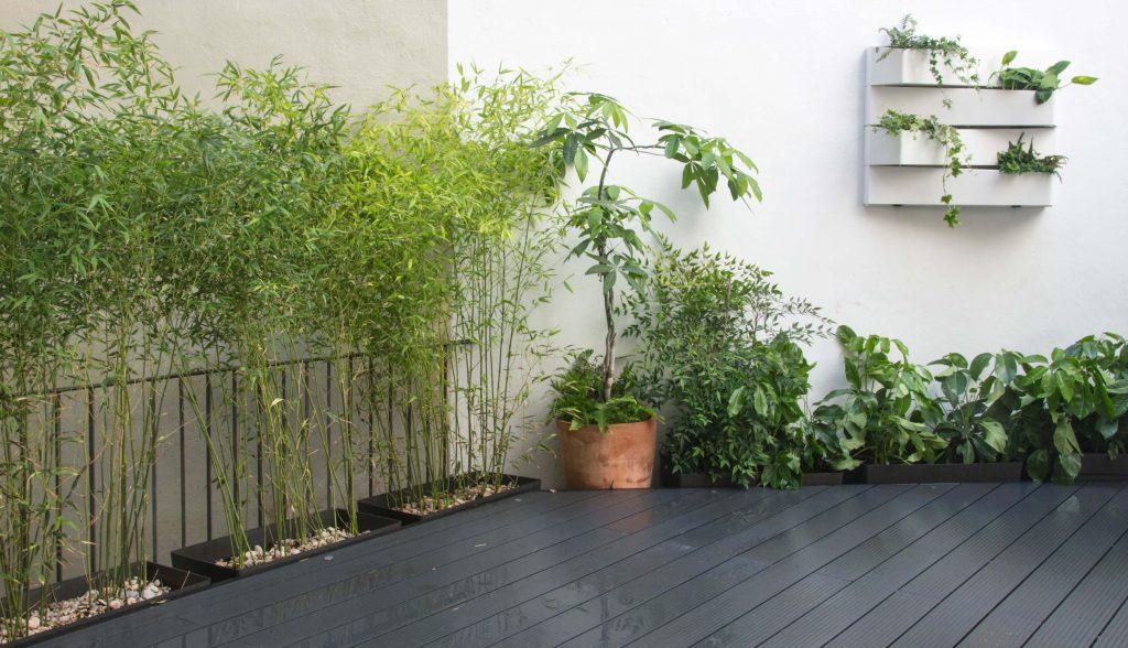 jardín vertical y bambús