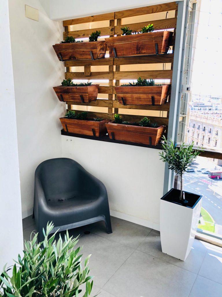 Terraza con plantas resistentes