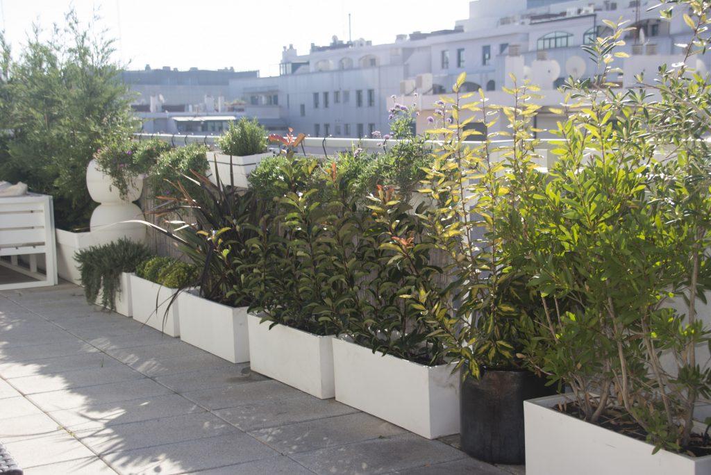 ático jardín 1