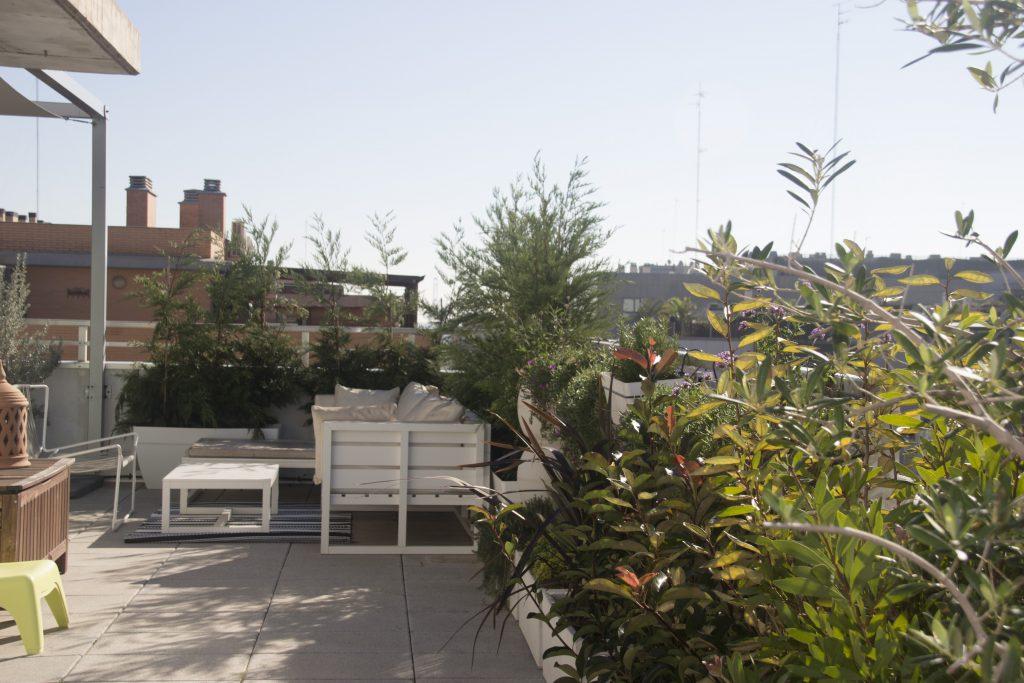 ático jardín