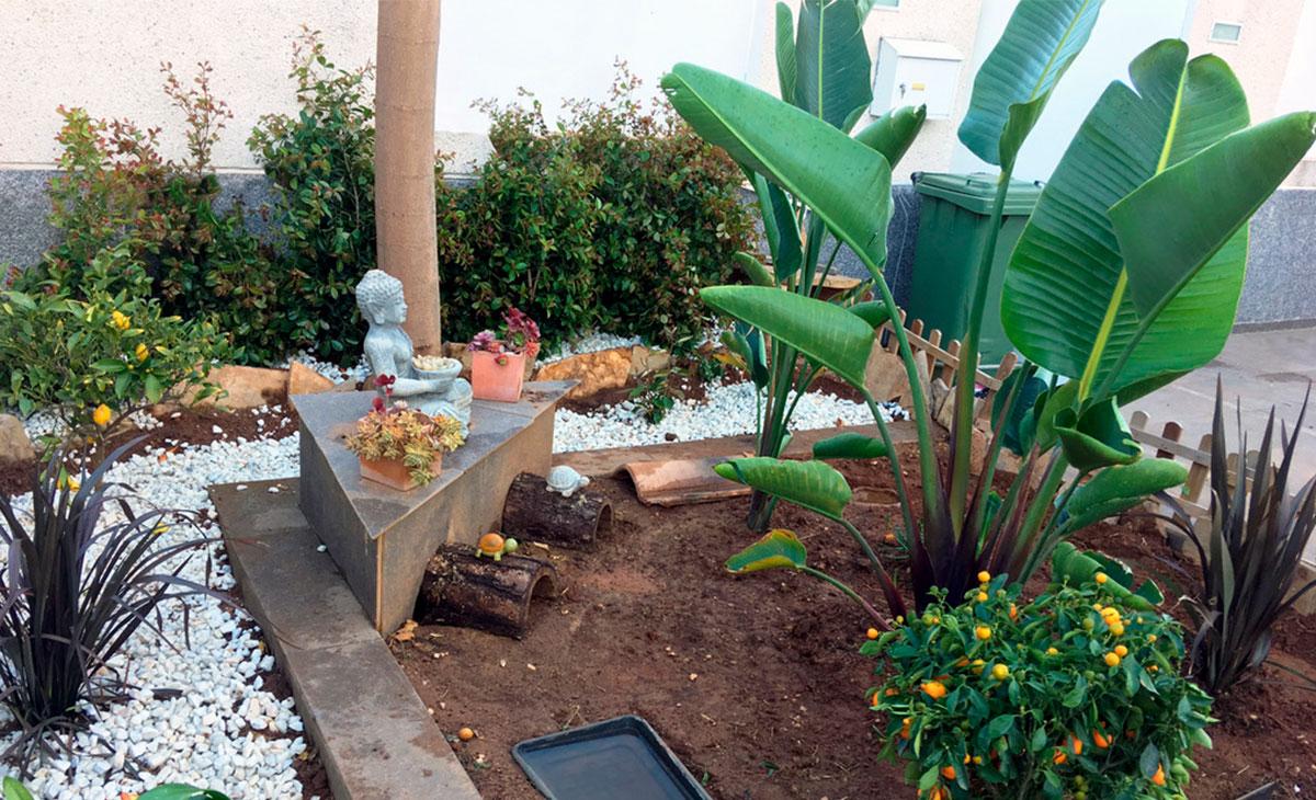jardín con encanto en terrario