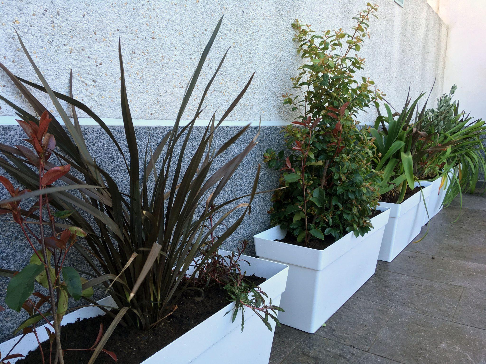 Jardineras con plantas para terraza