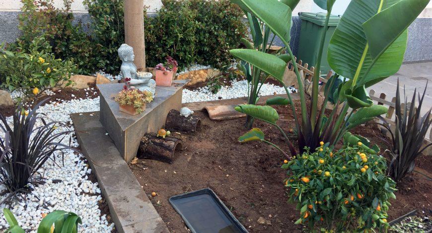 jardin con encanto en terrario