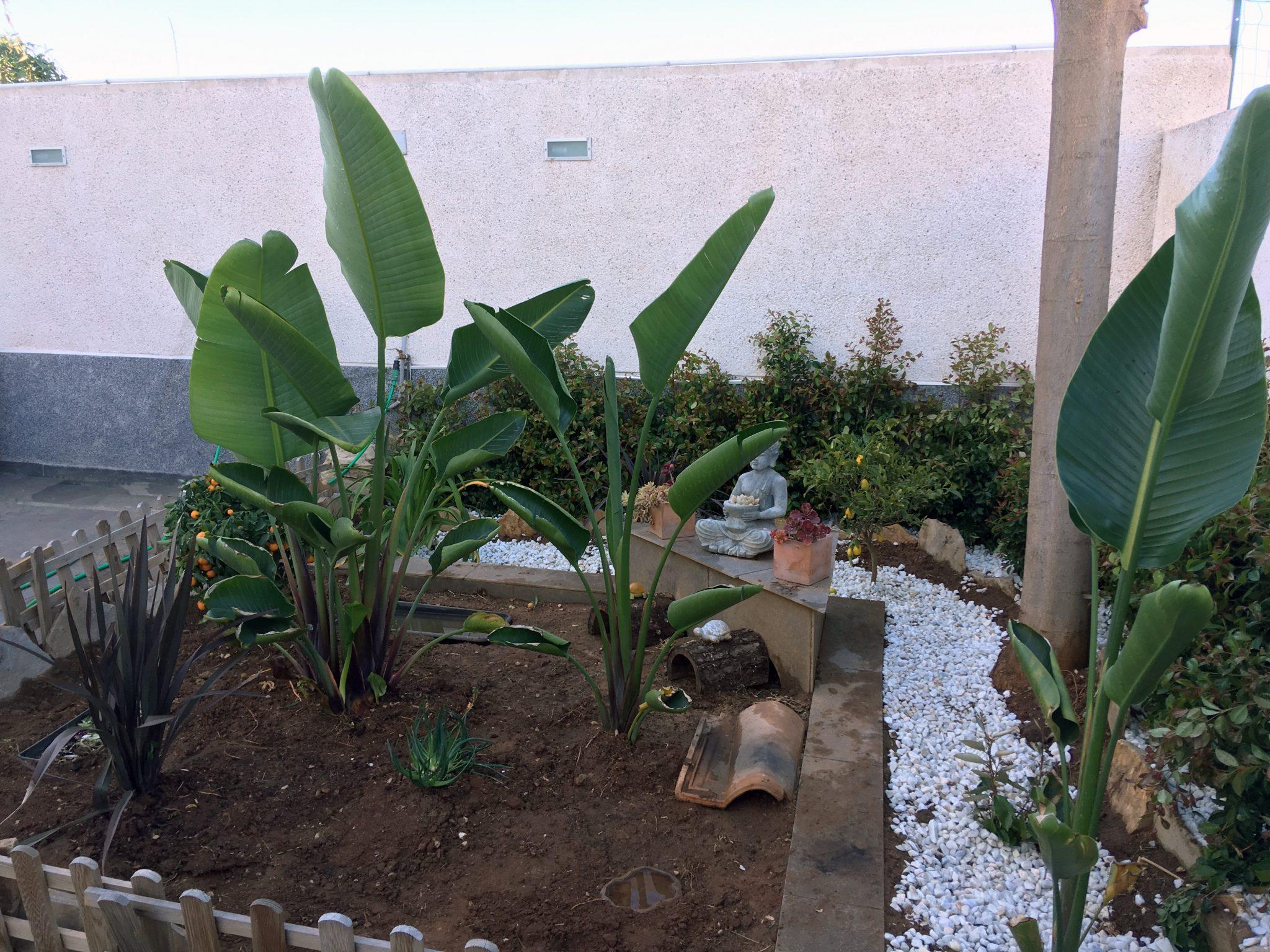 jardín terrario en terraza