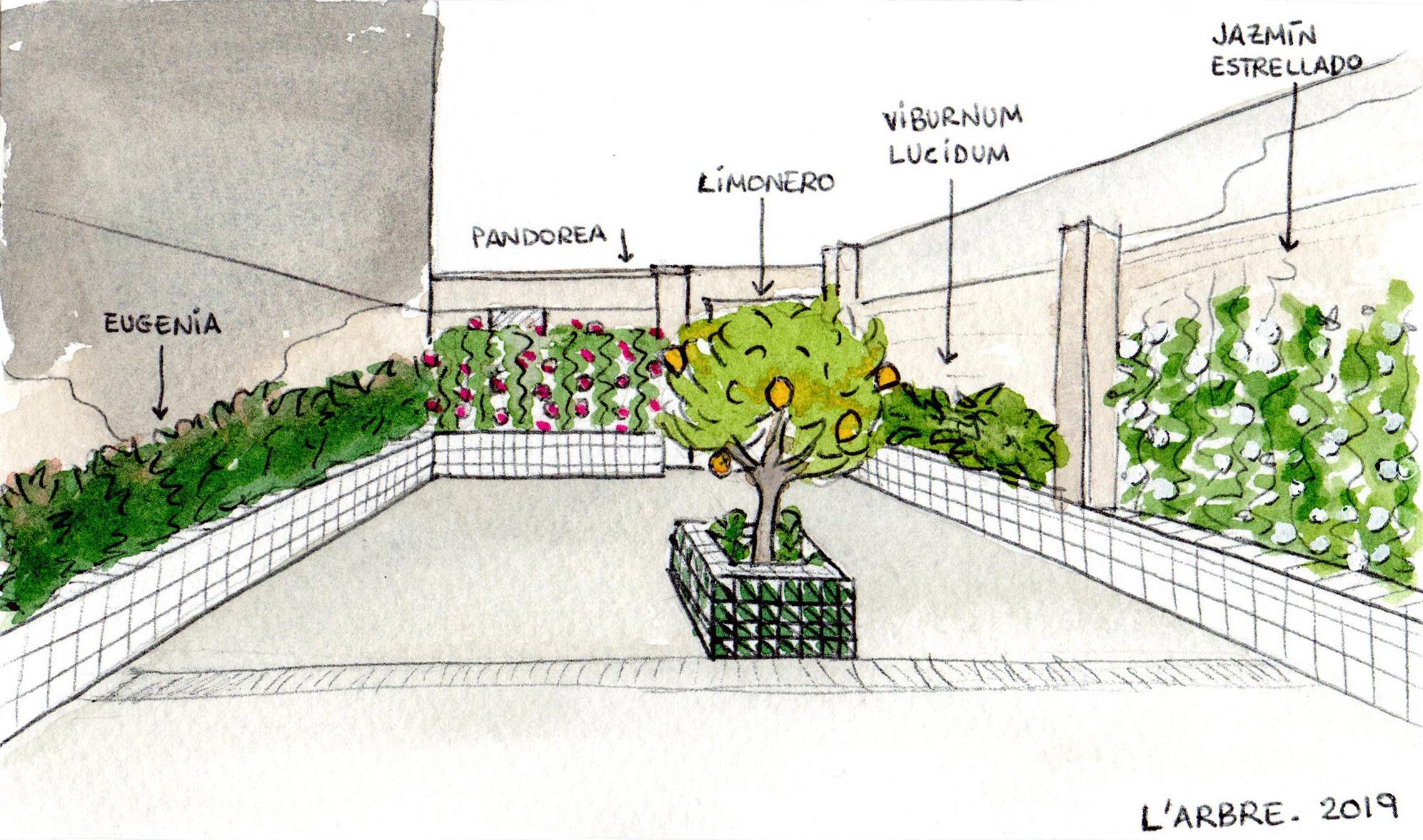 boceto del jardín