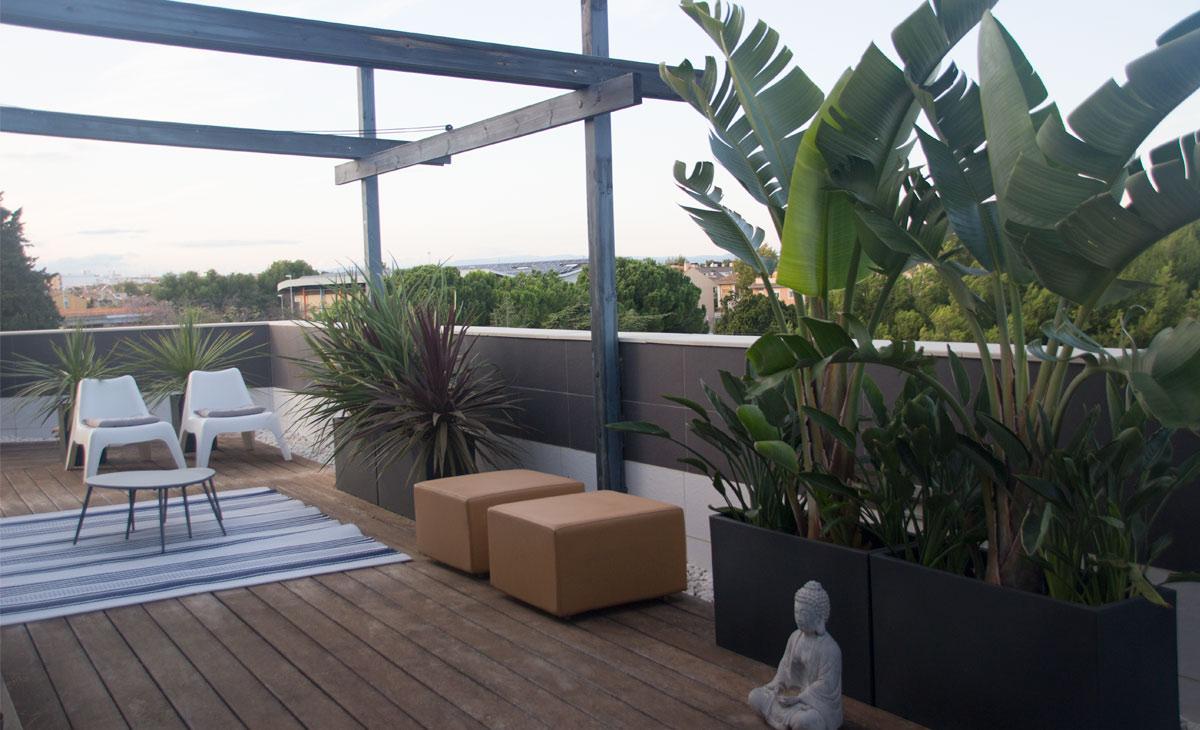 plantas tropicales en ático