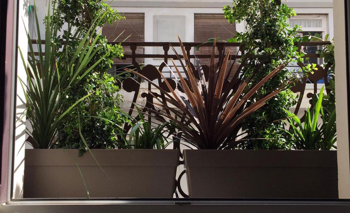 Plantas para jardín en balcón